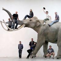 来!一起欣赏下Blue Rhino Studio的生物模型作品