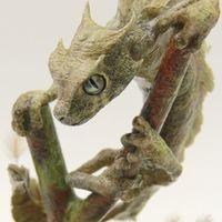 叶尾灵龙Uroplatus loong