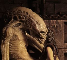 NECA 异形Alien: Resurrection 异形人Newborn Alien 前瞻