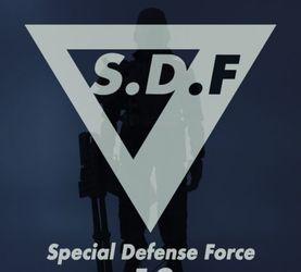 梦旅人 / S.D.F - 13(预售已结束)