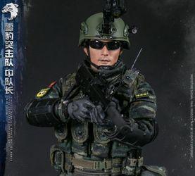 DAMTOYS中国武警部队- 雪豹突击队 中队长 12寸兵人 前瞻