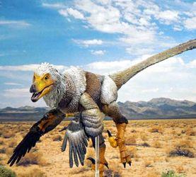 恐龙玩具遍地都是,他看上了长毛的恐龙