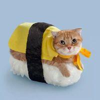 喵喵寿司~