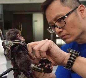 马志雄【动人偶像】创意设计展开幕