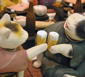 佐山泰弘的猫咪世界