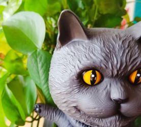【简评】撸猫?也要撸胶-Casey Weldon的猫猫虫