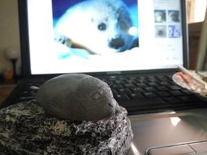 打算做一只肥萌的海豹,然后发现做的有点瘦