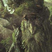 【经典TOYS—魔戒】树人代表老树胡 TOYBIZ 老物新赏