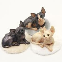 我的动物系列《小猫家族.明美》