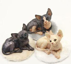 我的動物系列《小貓家族.明美》
