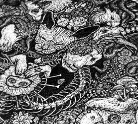 LY《萬物系列》-原創藝術插畫
